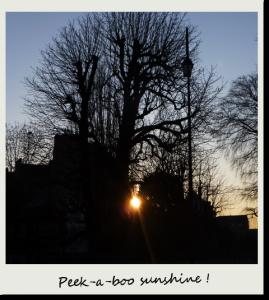 Soleil de bon matin