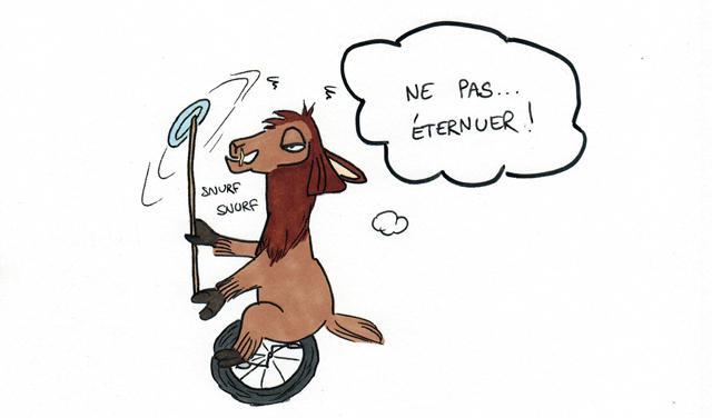 Un lama enrhumé à vélo