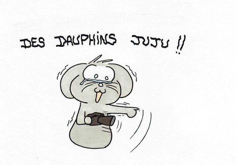 Des dauphhhiiins