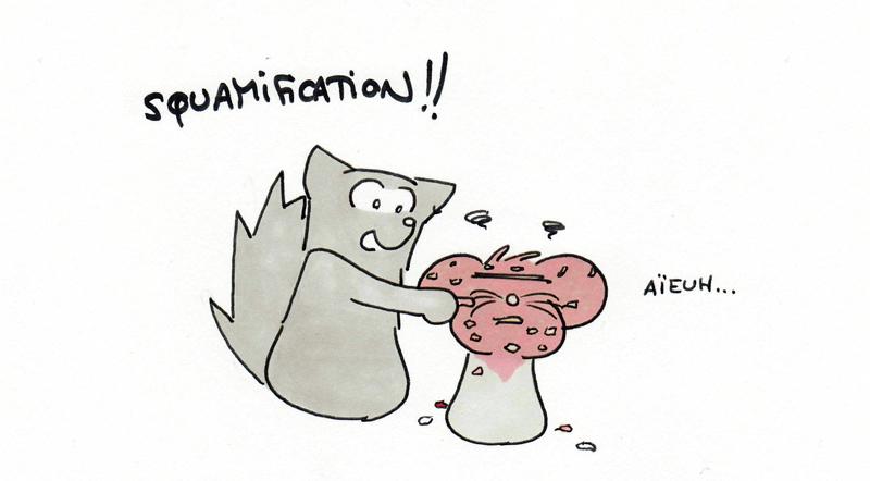 Squamificatioooon