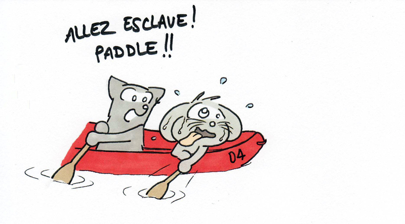 Paddle slave !!