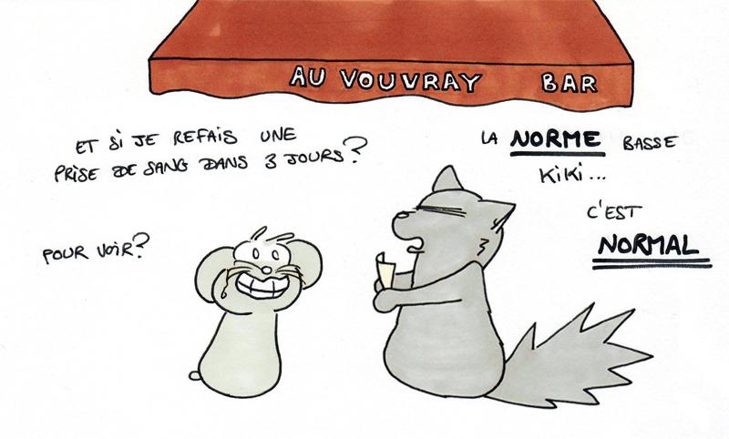 LA NORME BASSE