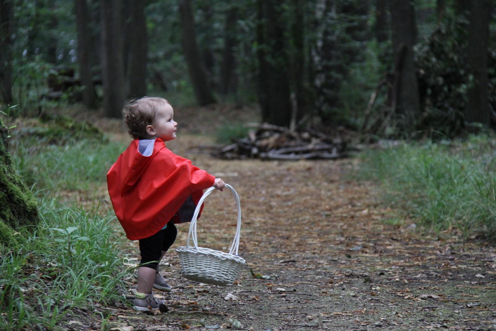 Petite Chaperon Rouge dans les Bois Jolis