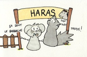Un barbecue au haras... Suspect !